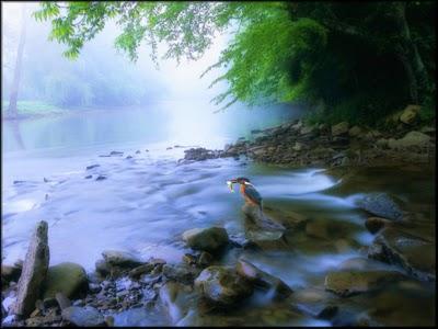 Hidup itu bagaikan sungai, dia mengalir membawa takdir hidupmu..
